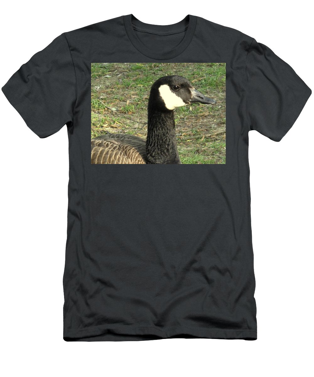 Canada Men's T-Shirt (Athletic Fit) featuring the photograph Canada Goose by Ian MacDonald