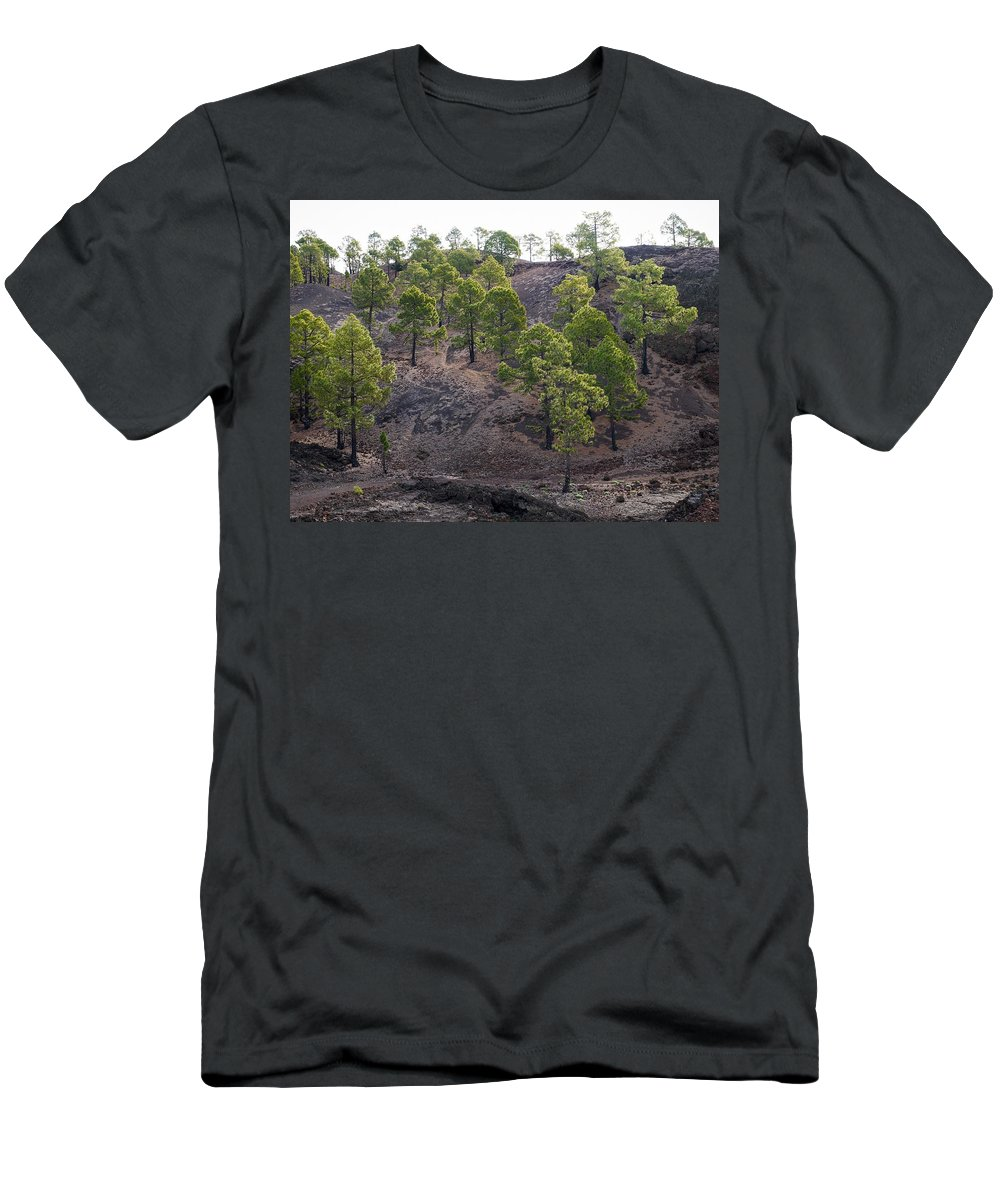 Landscape Men's T-Shirt (Athletic Fit) featuring the photograph Canary Pines Nr 3 by Jouko Lehto