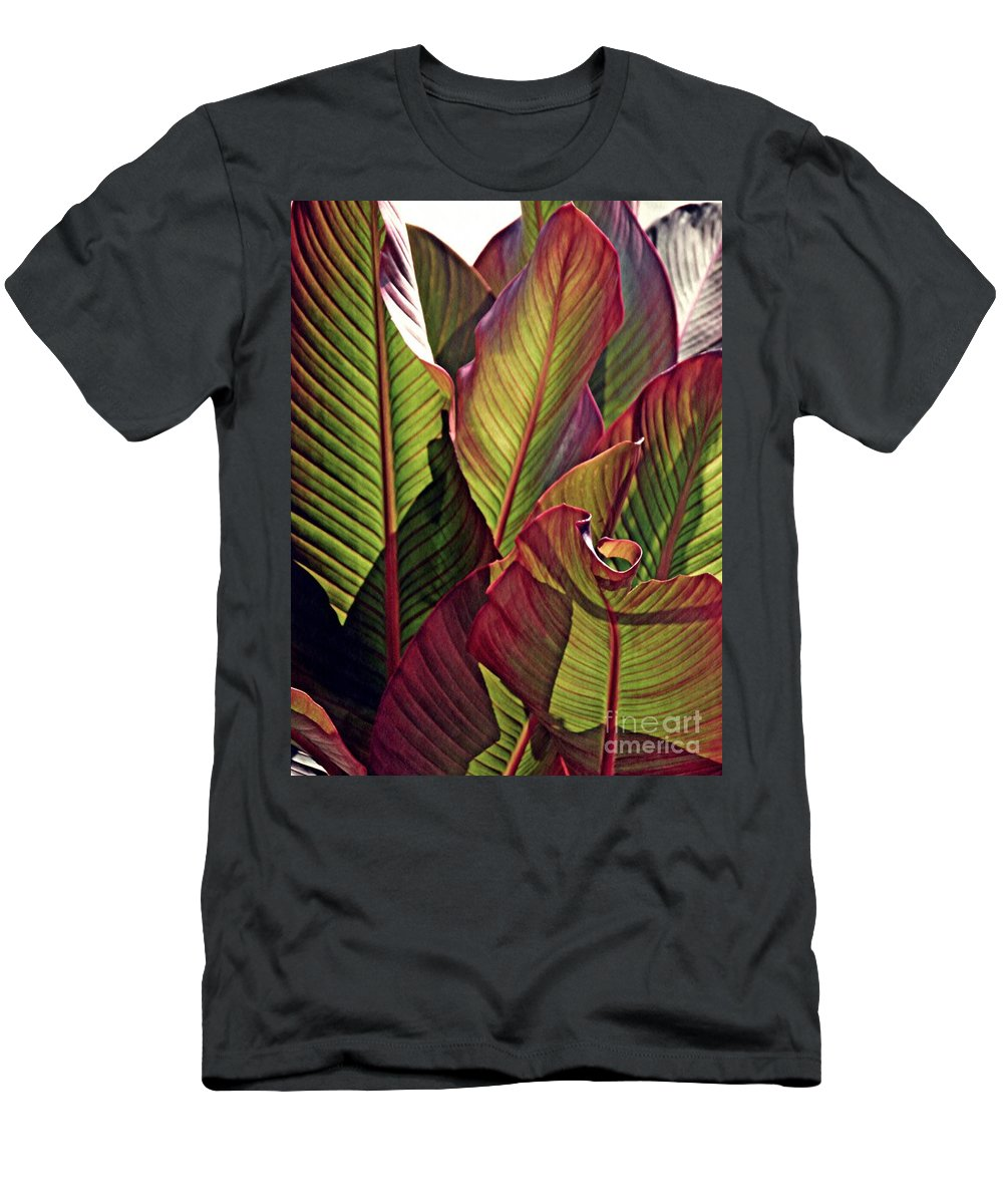 Canna Men's T-Shirt (Athletic Fit) featuring the photograph Canna Leaves 2  by Sarah Loft