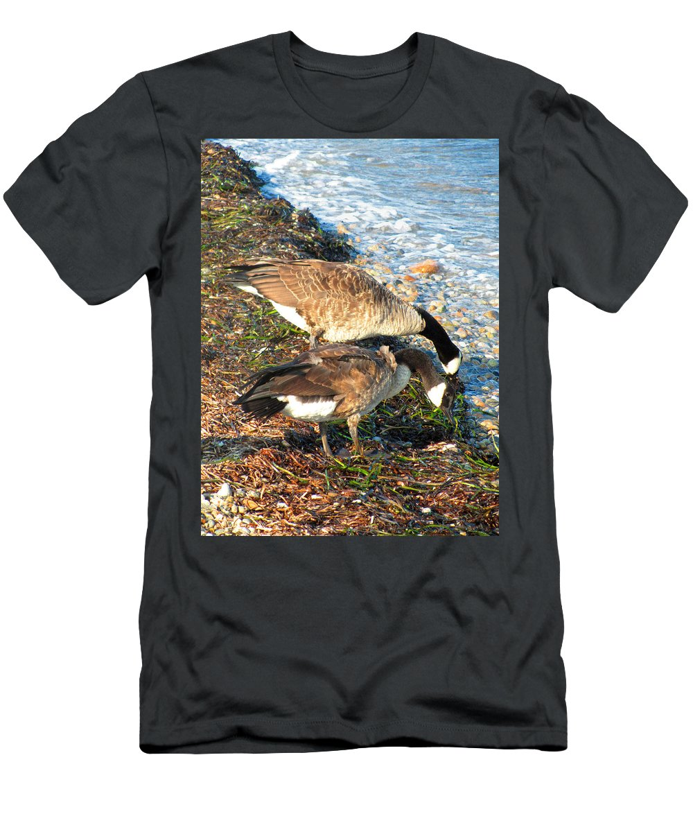 Canada Geese Men's T-Shirt (Athletic Fit) featuring the photograph Cape Cod Beachcombers 2 by Mark Sellers