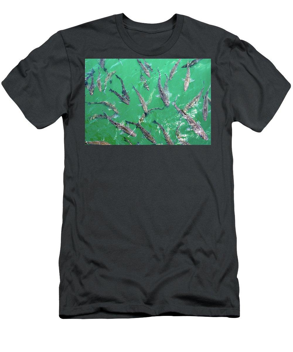 Carp T-Shirt featuring the photograph Carp by Anthony Jones