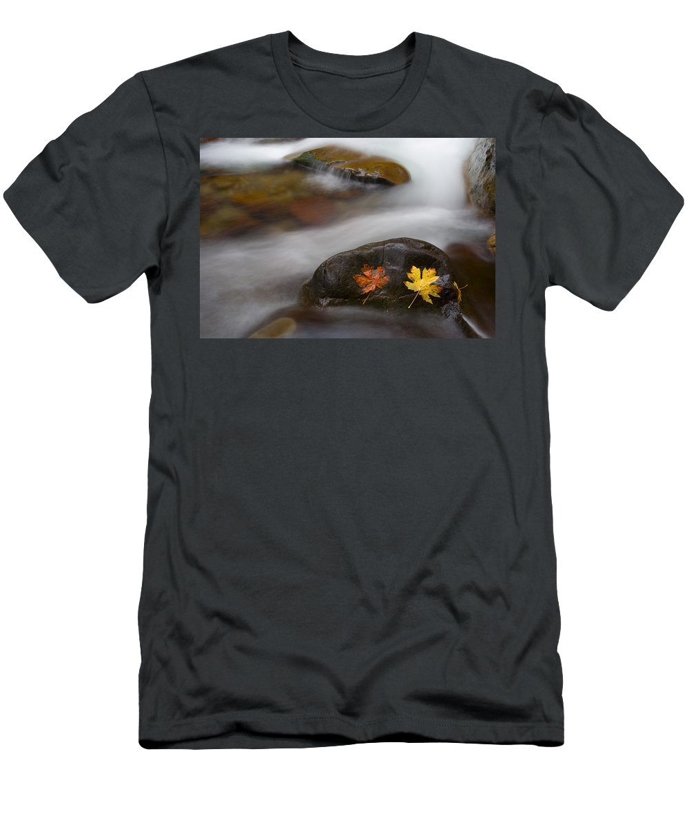 Leaves Men's T-Shirt (Athletic Fit) featuring the photograph Castaways by Mike Dawson