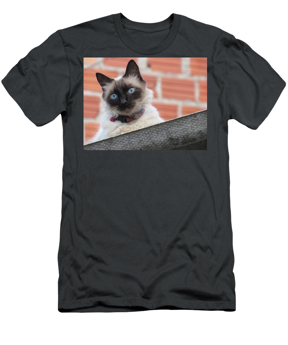 Men's T-Shirt (Athletic Fit) featuring the photograph Cat by Grazielle Costa