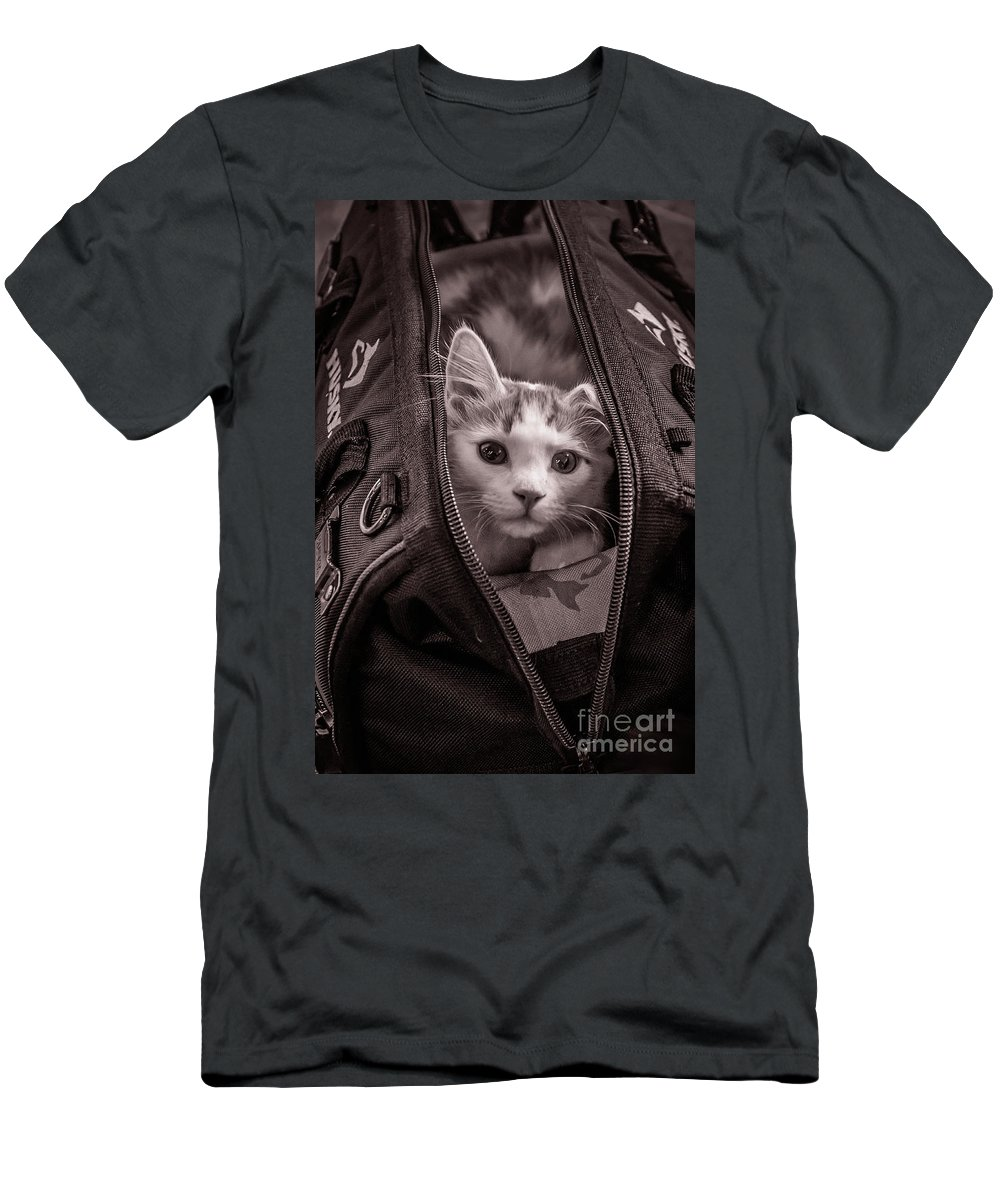 Cat Men's T-Shirt (Athletic Fit) featuring the photograph Cat In A Bag by Wayne Heim