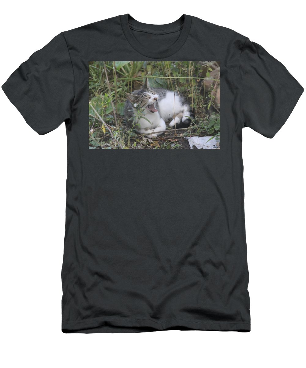 Cat Men's T-Shirt (Athletic Fit) featuring the photograph Cat Yawning In The Garden by Cliff Ball