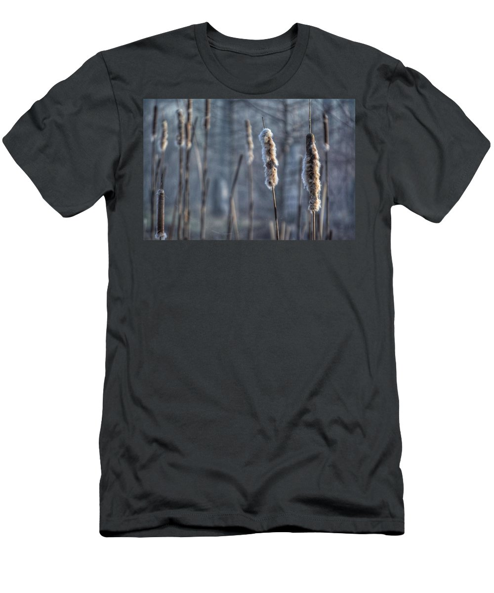 Cattails Men's T-Shirt (Athletic Fit) featuring the photograph Cattails In The Winter by Sumoflam Photography