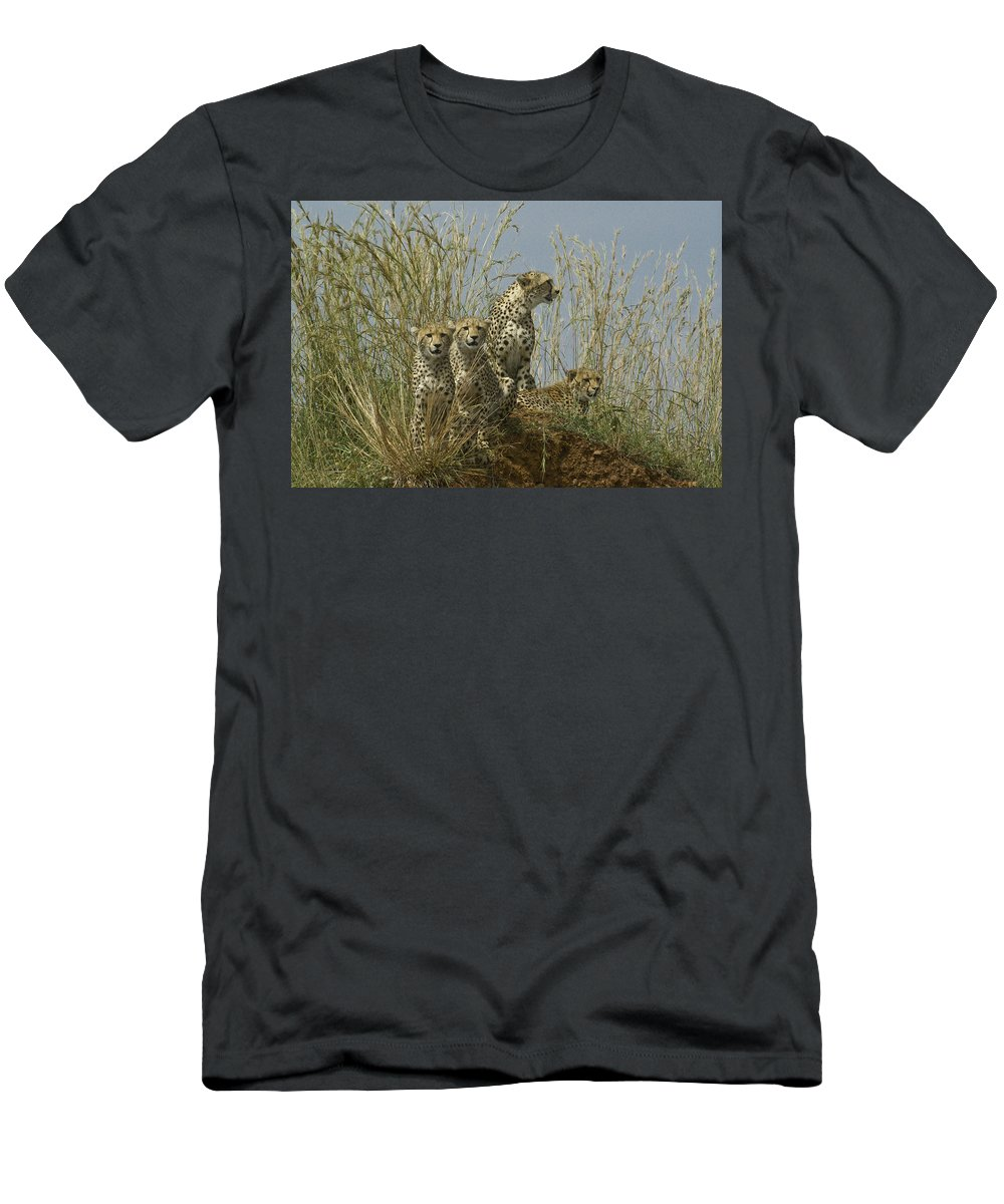 Africa T-Shirt featuring the photograph Cheetah Family by Michele Burgess