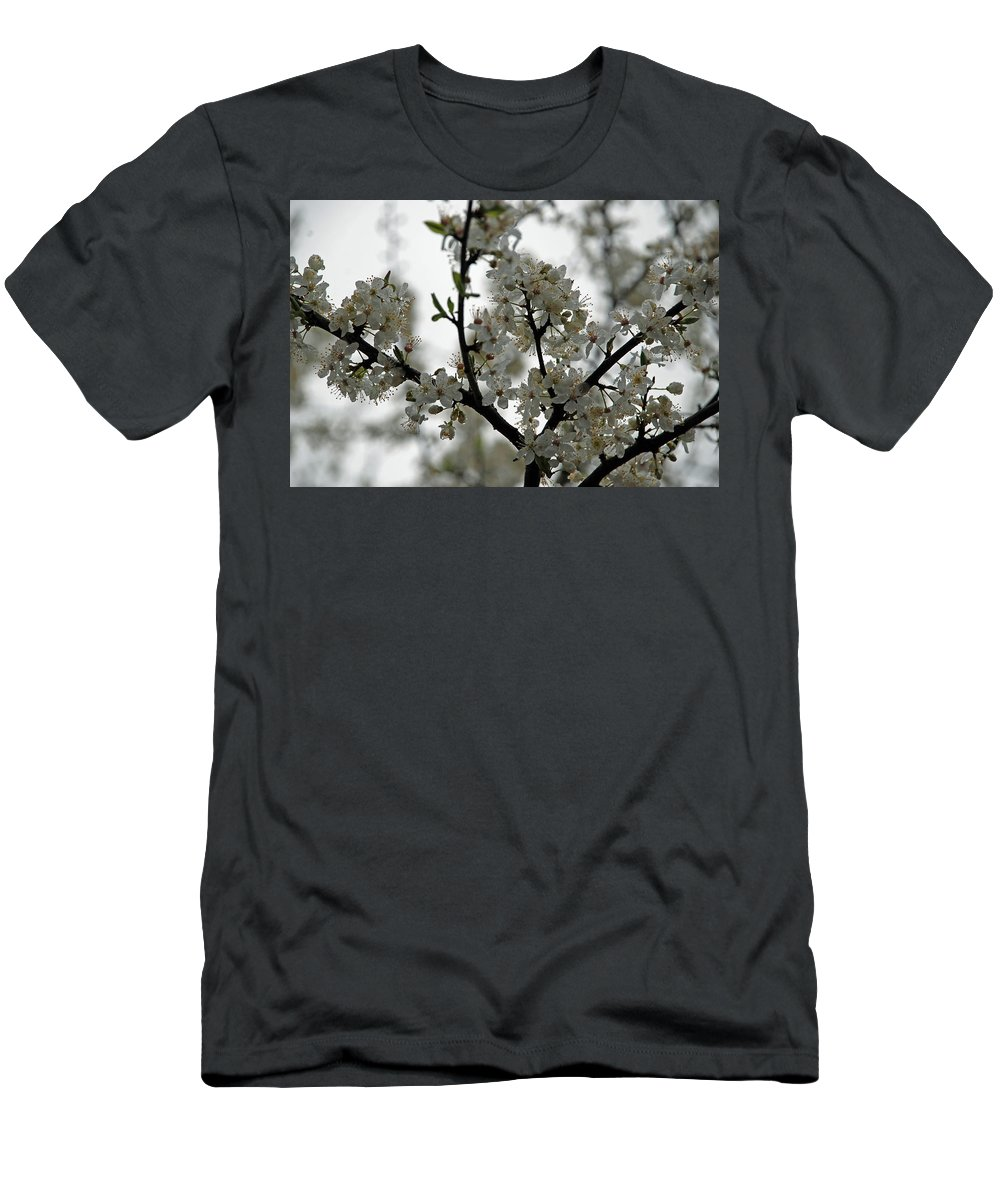 Orcas Island Men's T-Shirt (Athletic Fit) featuring the photograph Cherry Blossoms by Carol Eliassen