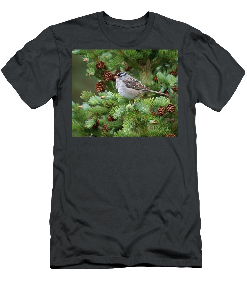Chickadee Men's T-Shirt (Athletic Fit) featuring the photograph Chickadee by Heather Coen
