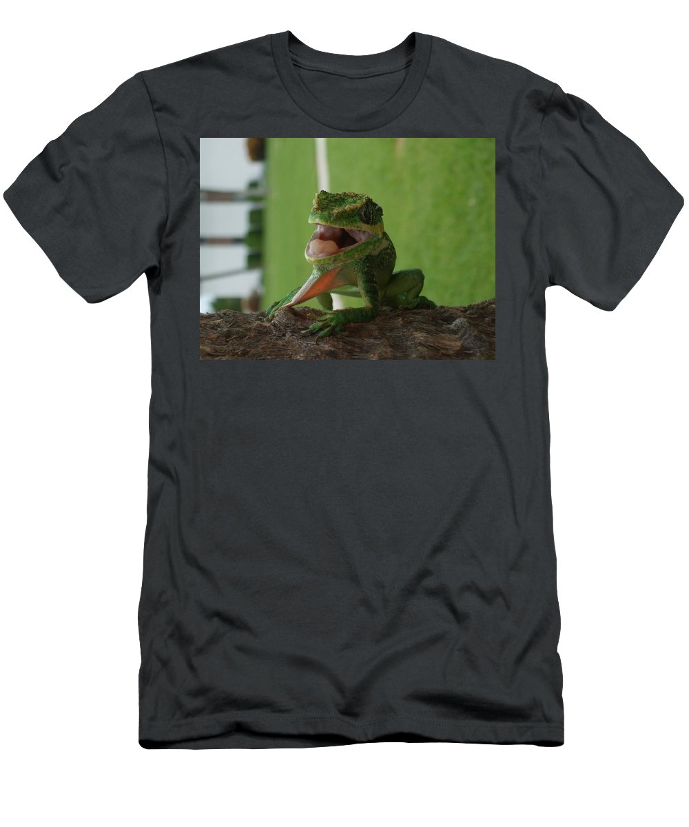 Iguana Men's T-Shirt (Athletic Fit) featuring the photograph Chilling On Wood by Rob Hans