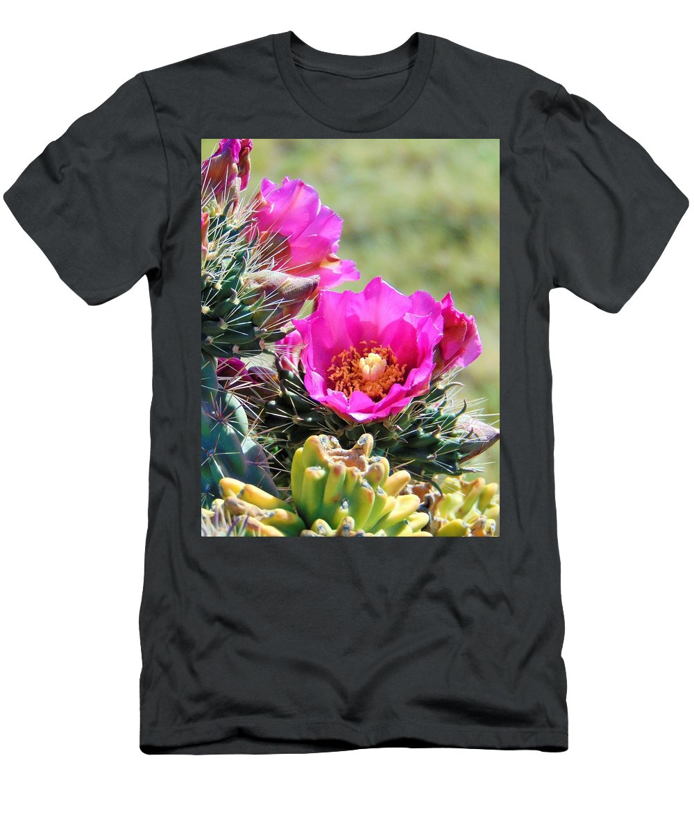 Cactus Flower Men's T-Shirt (Athletic Fit) featuring the photograph Cholla In Bloom by Carl Miller