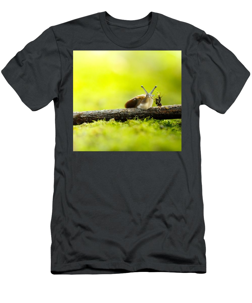 Snail Men's T-Shirt (Athletic Fit) featuring the photograph Chomp by Shane Holsclaw
