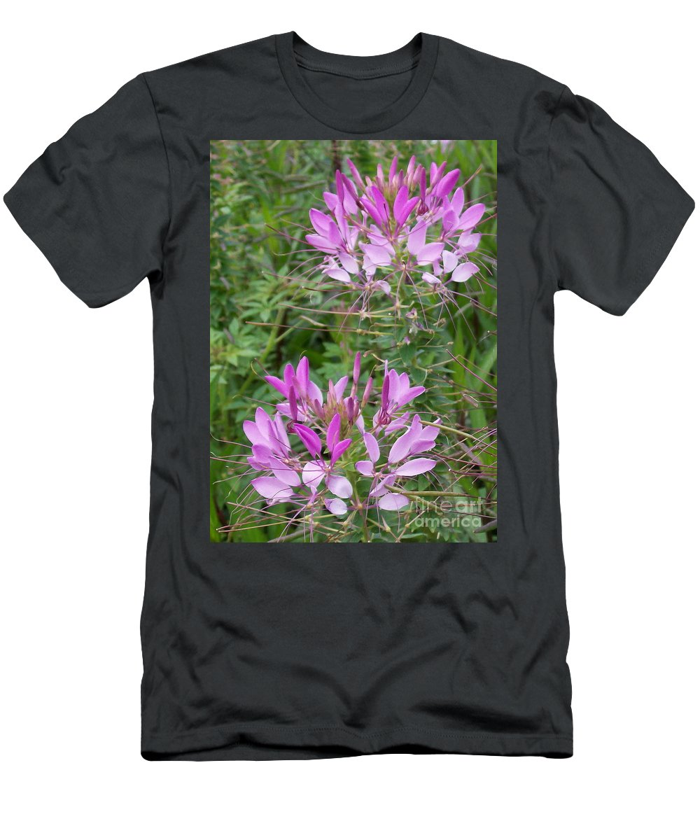 Cleome Men's T-Shirt (Athletic Fit) featuring the photograph Cleome Sparkler Lavender by Laurie Eve Loftin