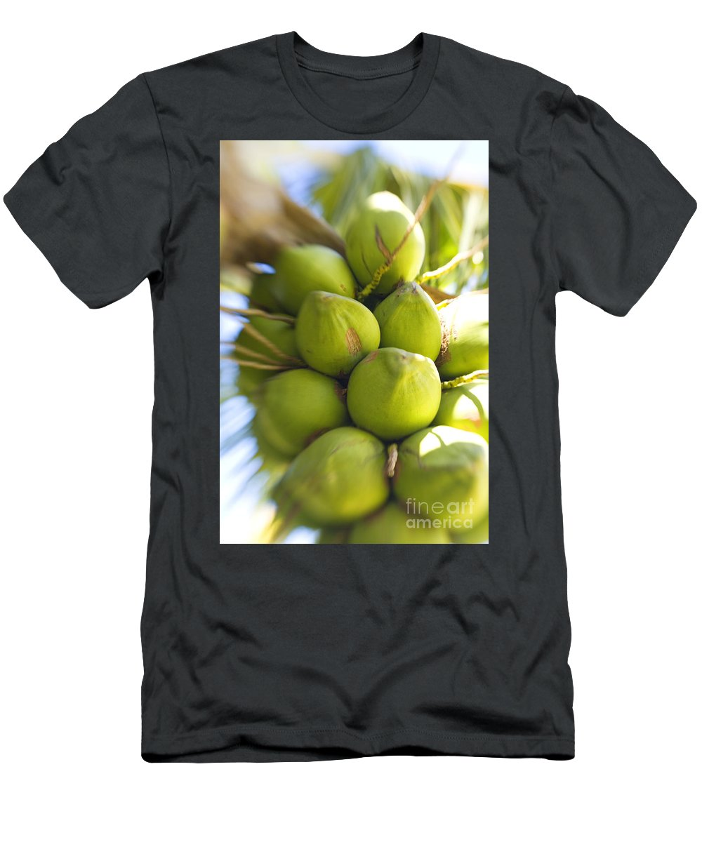 Blur Men's T-Shirt (Athletic Fit) featuring the photograph Coconut Bunch by Ron Dahlquist - Printscapes