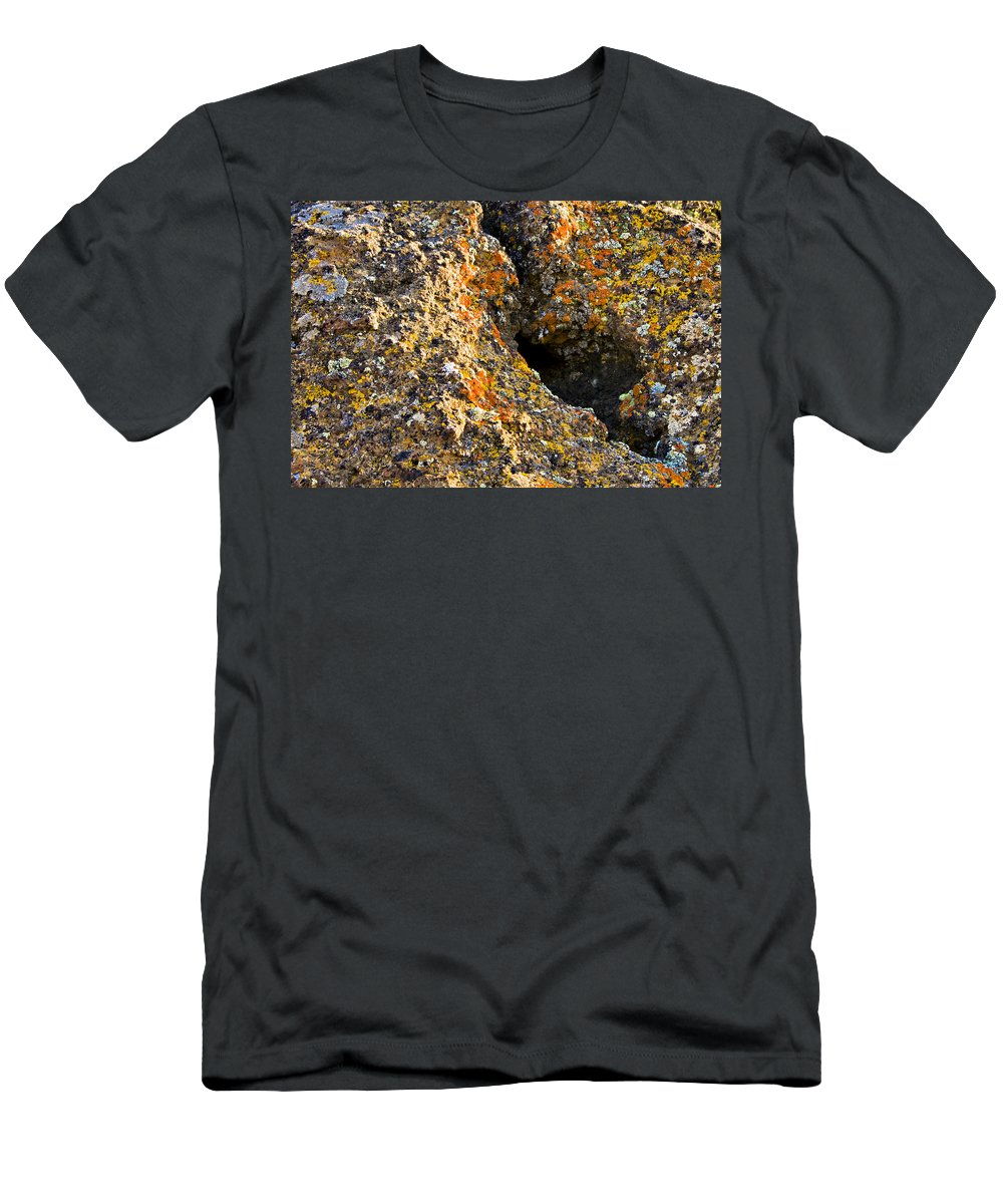 Lichen Men's T-Shirt (Athletic Fit) featuring the photograph Colorful Lichens by Albert Seger