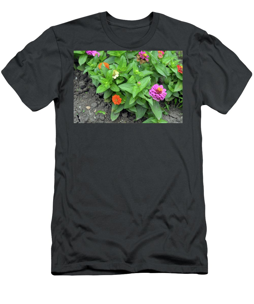 Plant Men's T-Shirt (Athletic Fit) featuring the photograph Colorful Pink And Orange Flowers In Green Leaves Bush In The Garden. by Oana Unciuleanu