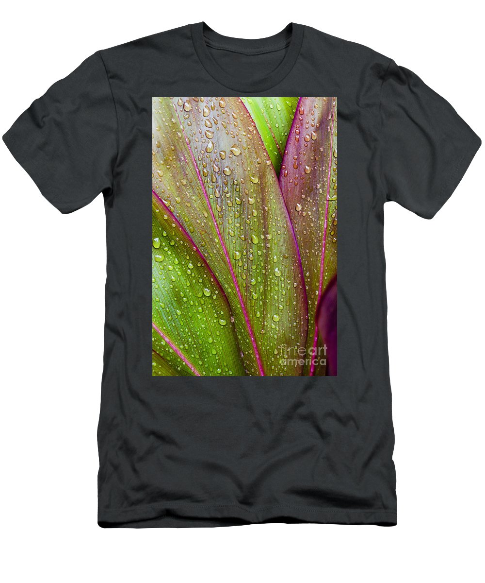 Abstract Men's T-Shirt (Athletic Fit) featuring the photograph Colorful Ti Leaves by Joe Carini - Printscapes