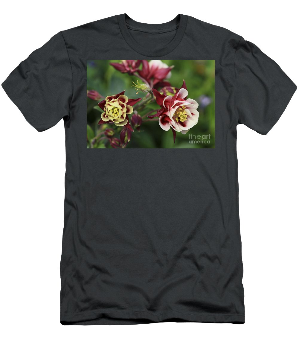 Flowers Men's T-Shirt (Athletic Fit) featuring the photograph Columbine In Spring by Deborah Benoit