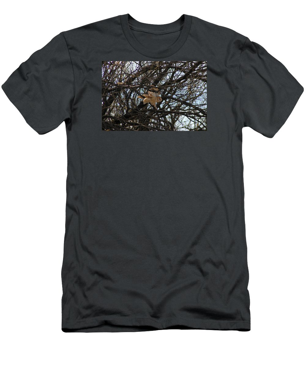 Large Men's T-Shirt (Athletic Fit) featuring the photograph Coming In For A Landing by Teresa Stallings