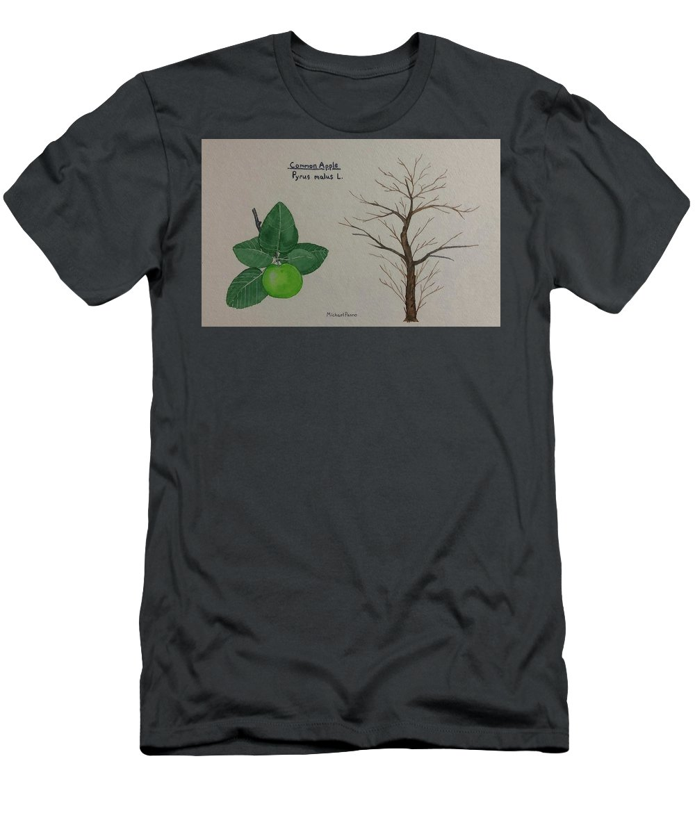 Nature Men's T-Shirt (Athletic Fit) featuring the painting Common Apple Tree Id by Michael Panno