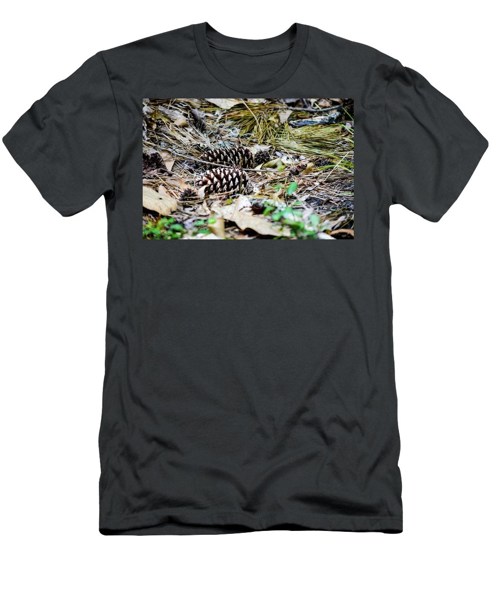 Forest Men's T-Shirt (Athletic Fit) featuring the photograph Cones by Christina Zizzo