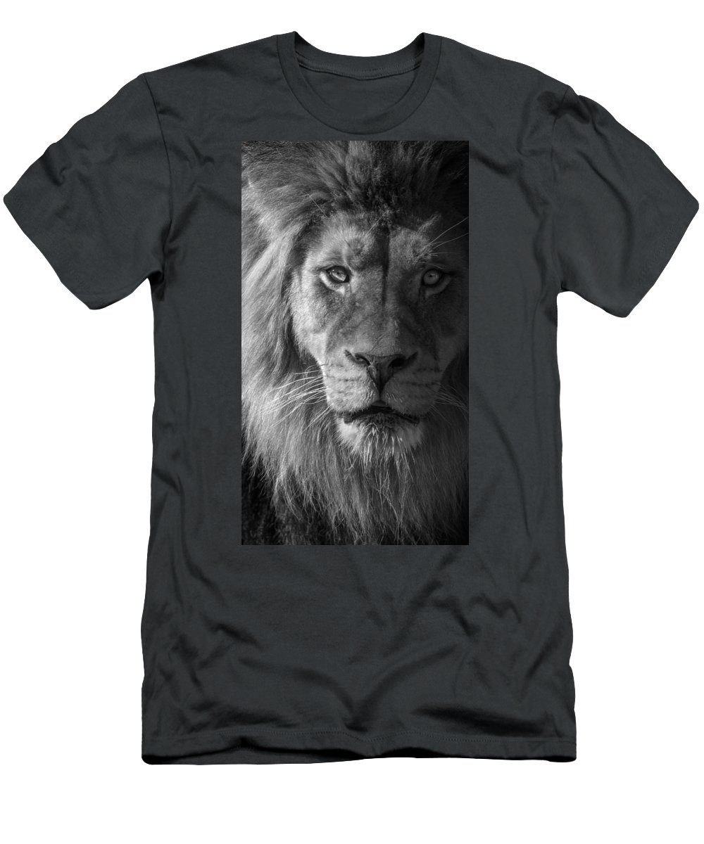 Conquistador B-w Men's T-Shirt (Athletic Fit) featuring the photograph Conquistador B-w by Wes and Dotty Weber