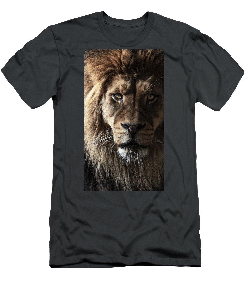 Conquistador Men's T-Shirt (Athletic Fit) featuring the photograph Conquistador by Wes and Dotty Weber