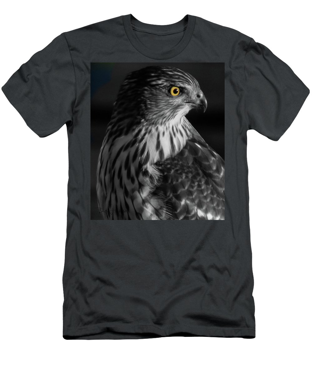 Coopers Men's T-Shirt (Athletic Fit) featuring the photograph Coopers Hawk Bw by Dustin Huckfeldt