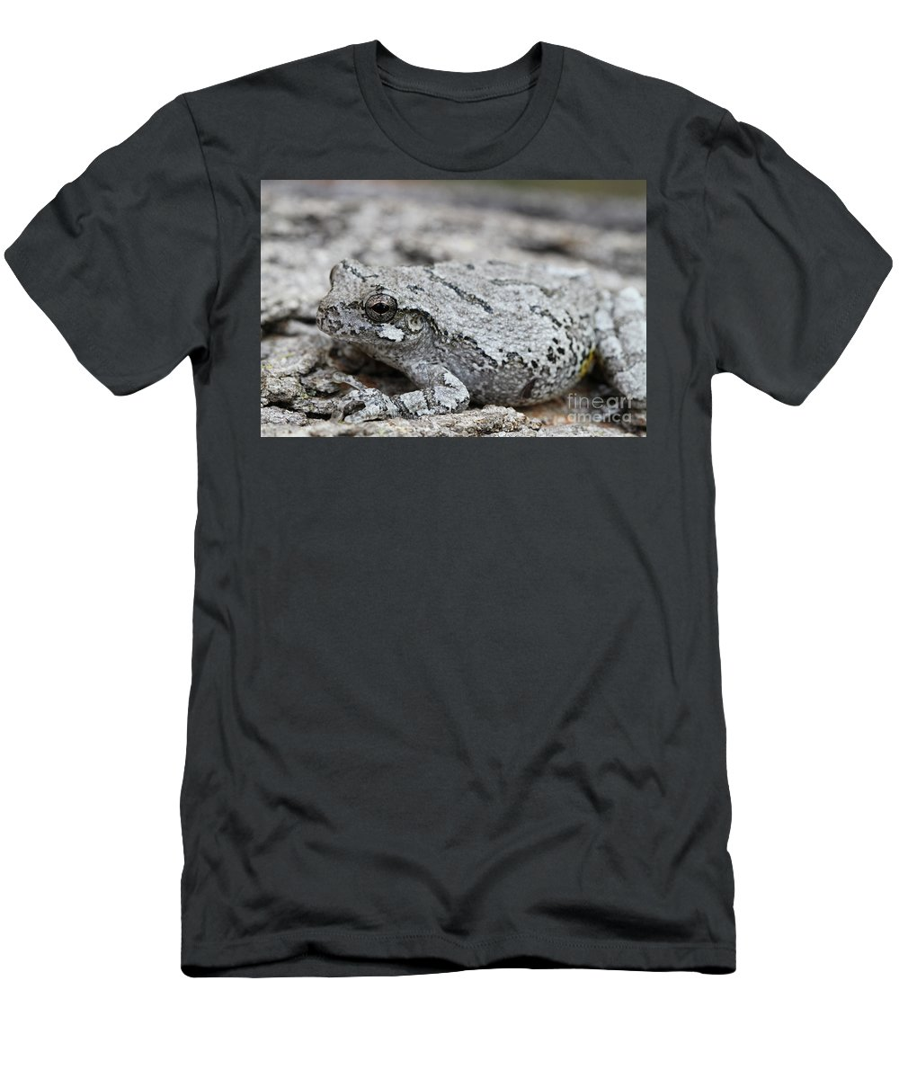 Frog Men's T-Shirt (Athletic Fit) featuring the photograph Cope's Gray Tree Frog #5 by Judy Whitton