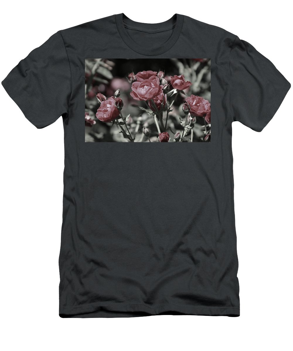 Copper Pink Rose T-Shirt featuring the photograph Copper Rouge Rose in Almost Black and White by Colleen Cornelius