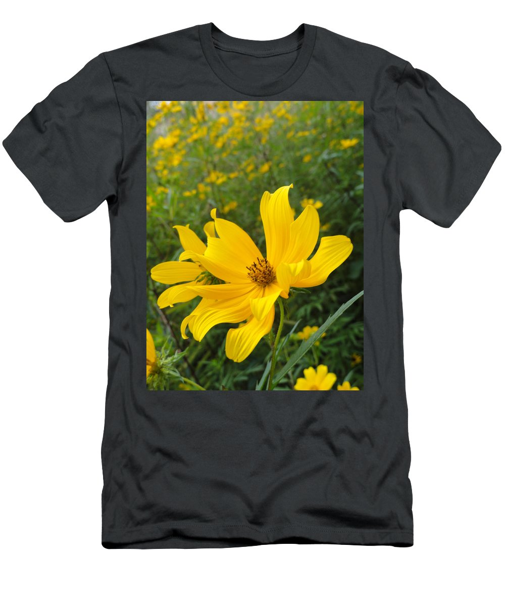 Coreopsis Men's T-Shirt (Athletic Fit) featuring the photograph Coreopsis by Trish Hale
