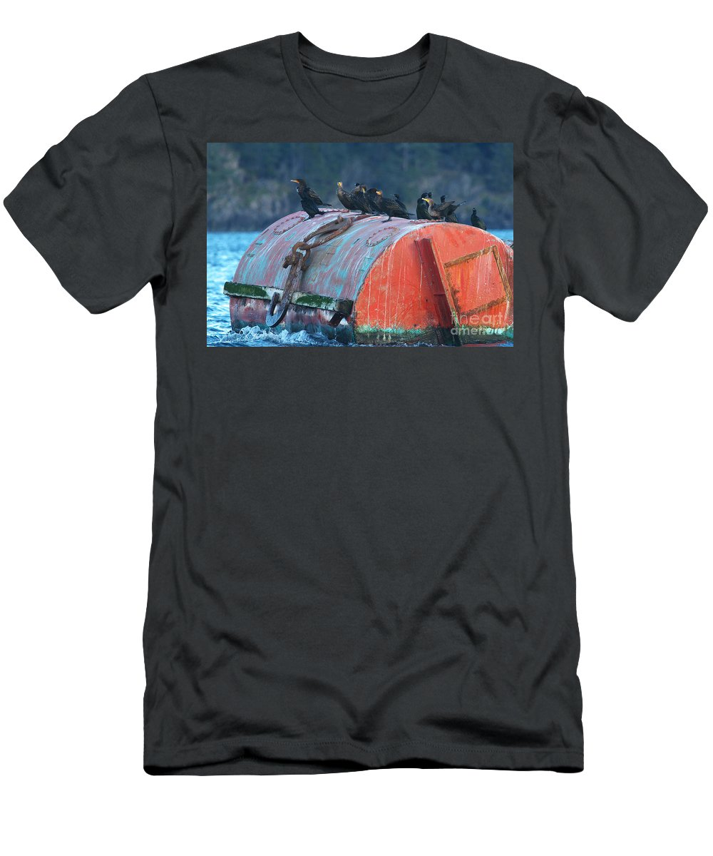Cormorants Men's T-Shirt (Athletic Fit) featuring the photograph Cormorants On A Barrel by Sharon Talson