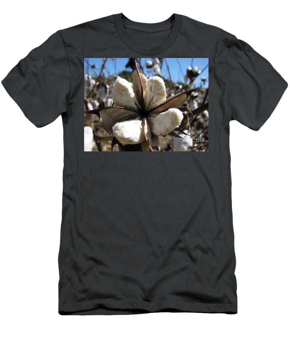 Cotton Men's T-Shirt (Athletic Fit) featuring the photograph Cotton by Amanda Barcon