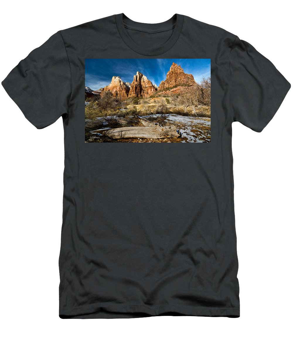 Mountains Men's T-Shirt (Athletic Fit) featuring the photograph Court Of The Patriarchs by Christopher Holmes