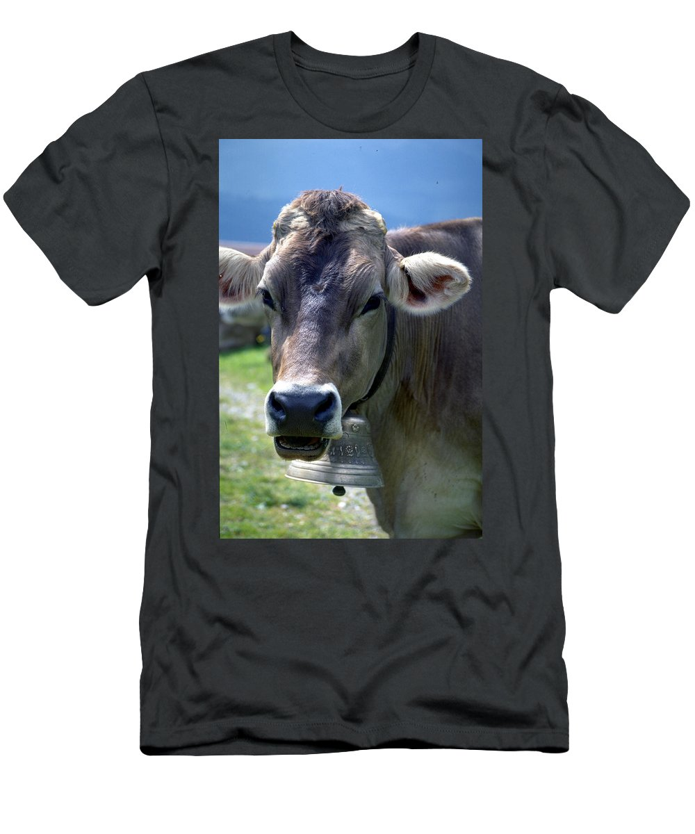 Cow Men's T-Shirt (Athletic Fit) featuring the photograph Cow by Flavia Westerwelle