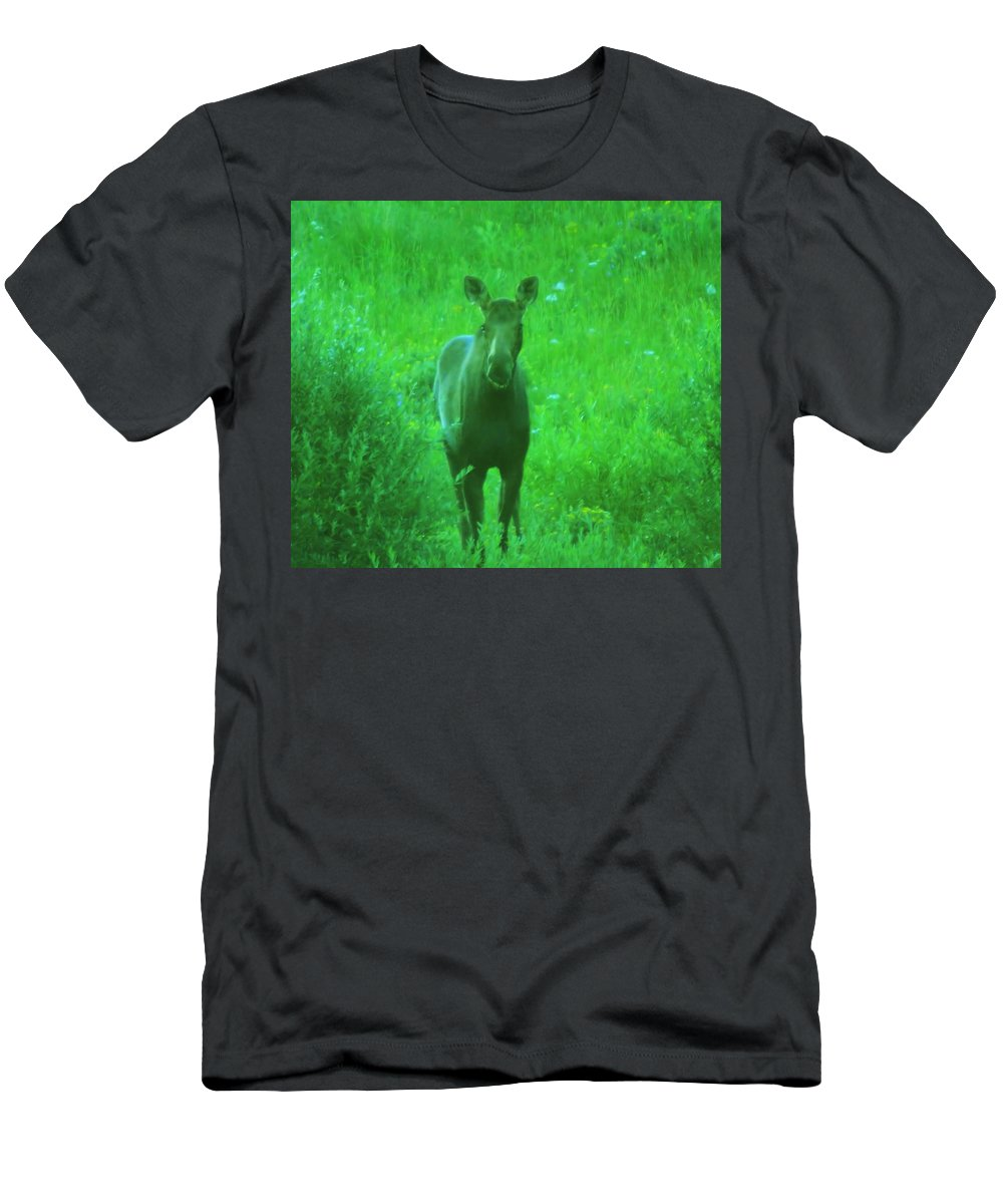 Moose Men's T-Shirt (Athletic Fit) featuring the photograph Cow Moose  by Jeff Swan