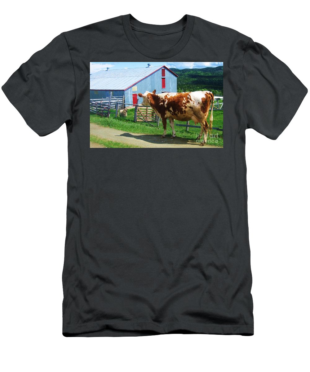Photograph Cow Sheep Barn Field Newfoundland Men's T-Shirt (Athletic Fit) featuring the photograph Cow Sheep And Bicycle by Seon-Jeong Kim