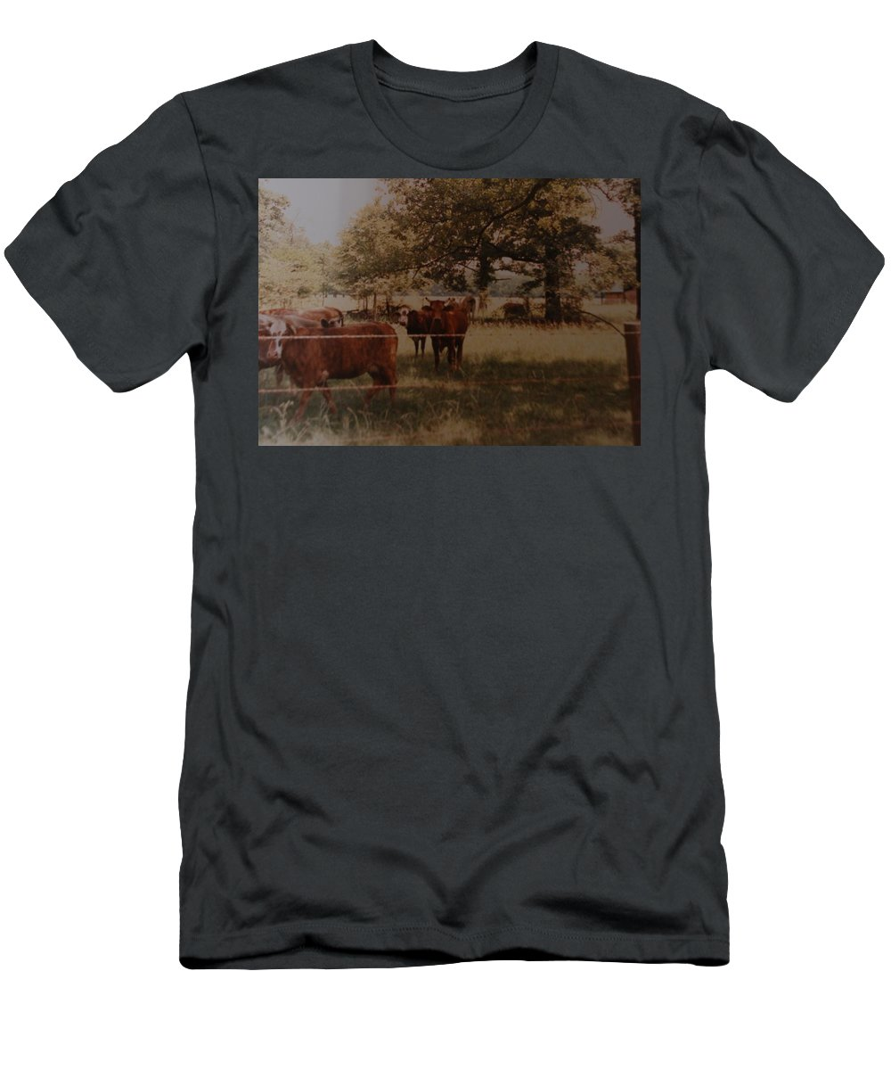 Cows Men's T-Shirt (Athletic Fit) featuring the photograph Cows by Rob Hans