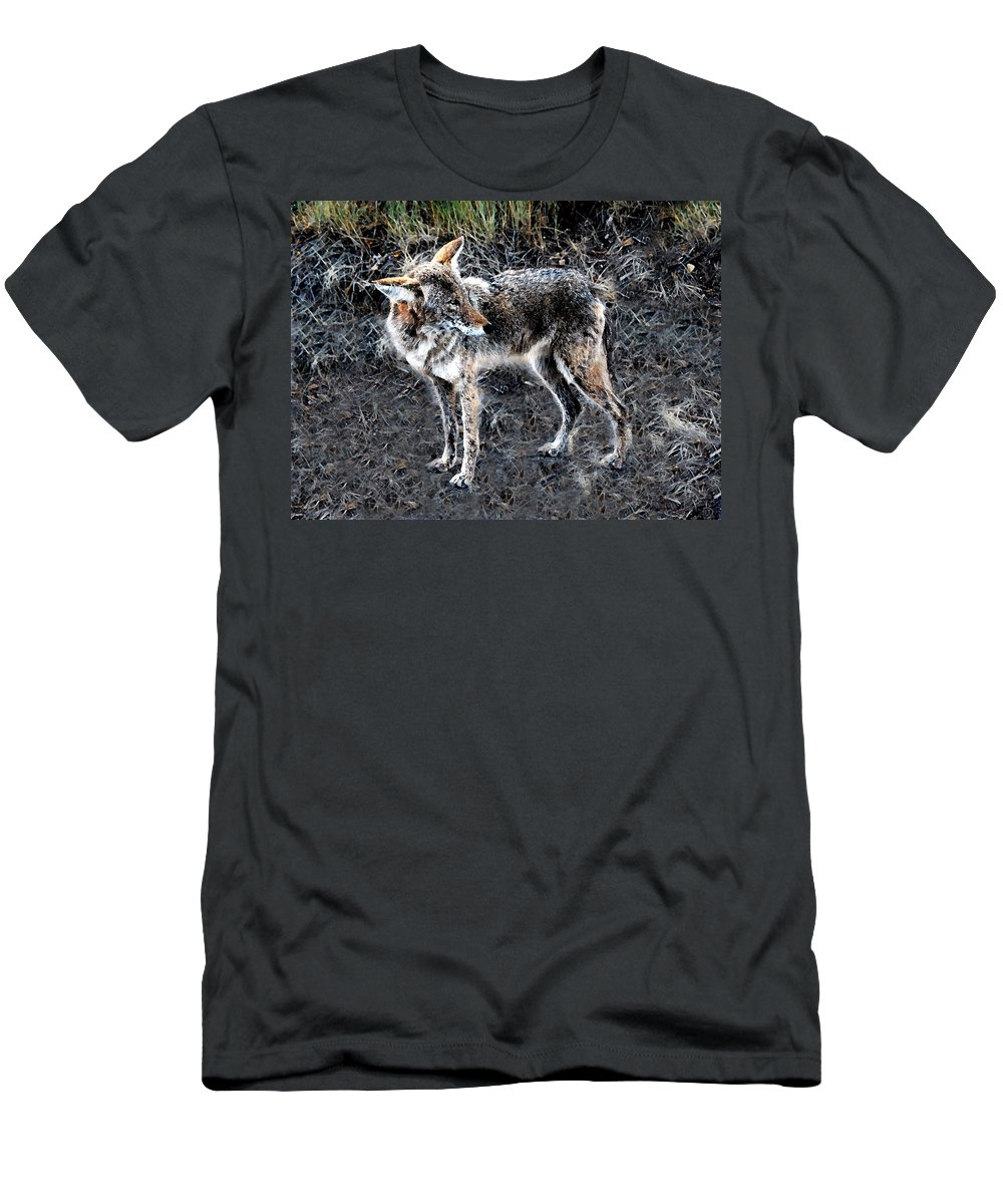 Coyote Men's T-Shirt (Athletic Fit) featuring the painting Coyote Waits by David Lee Thompson