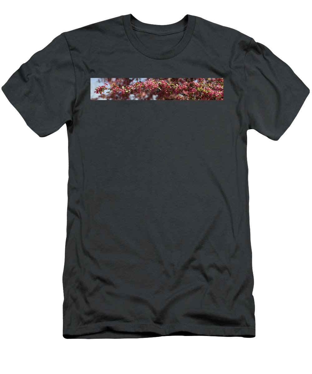 Crabapple T-Shirt featuring the photograph Crabapple in spring panoramic by Michael Bessler