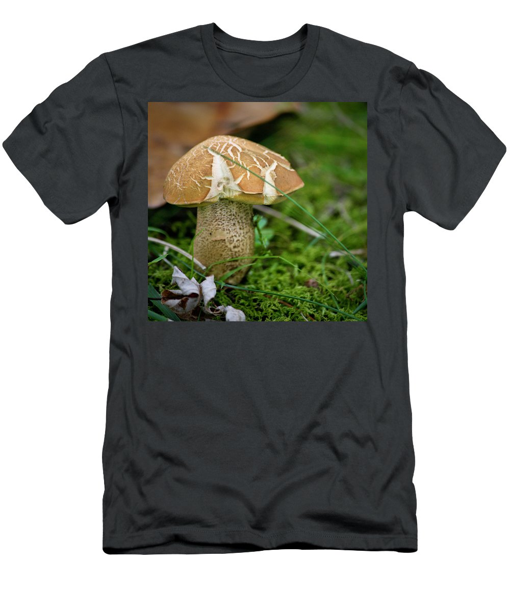 Fungus Men's T-Shirt (Athletic Fit) featuring the photograph Crackles Squared by Teresa Mucha