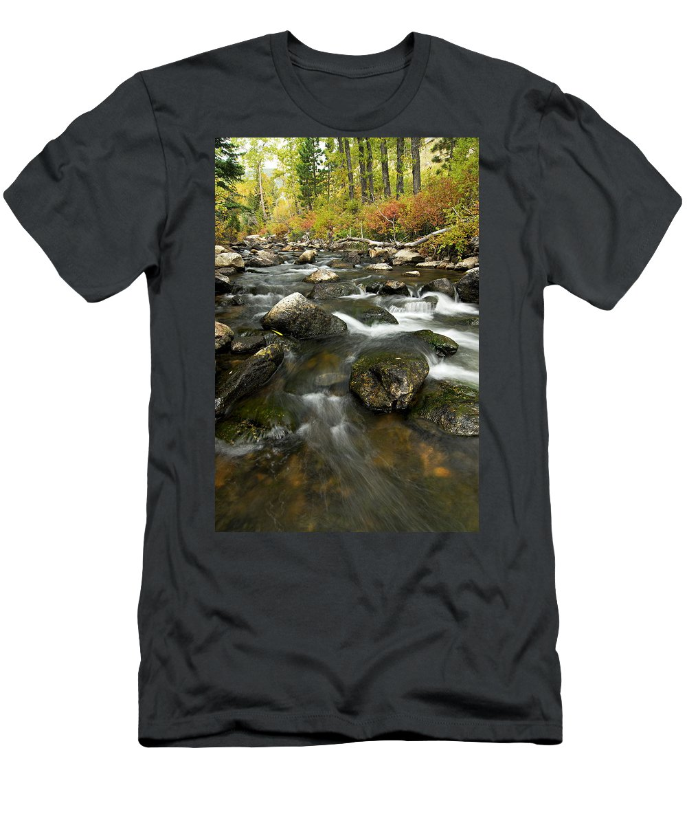 Crazy Woman Creek Men's T-Shirt (Athletic Fit) featuring the photograph Crazy Woman Creek In Autumn by Larry Ricker