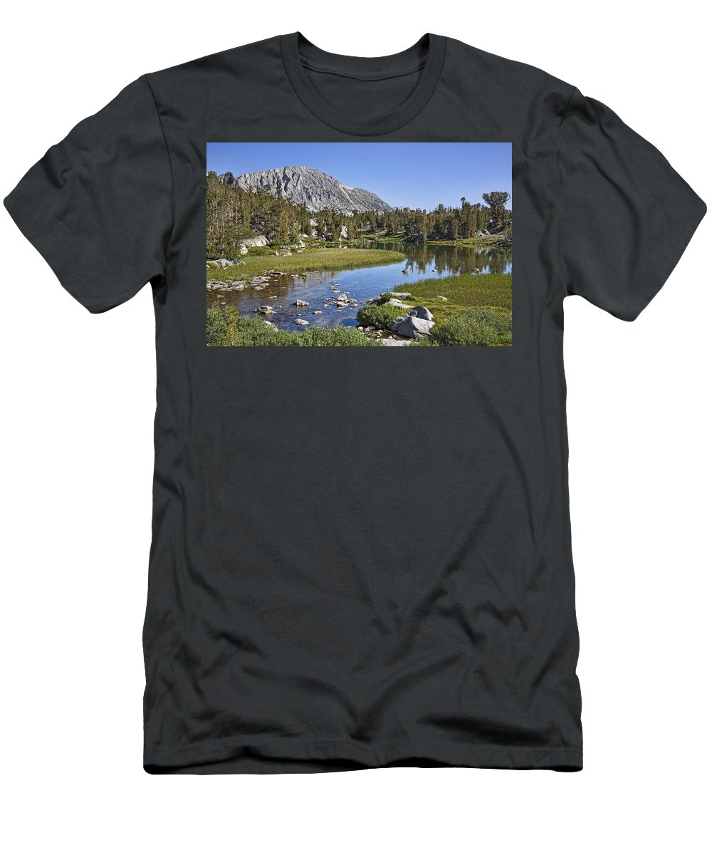 Water Men's T-Shirt (Athletic Fit) featuring the photograph Creek With A View by Kelley King