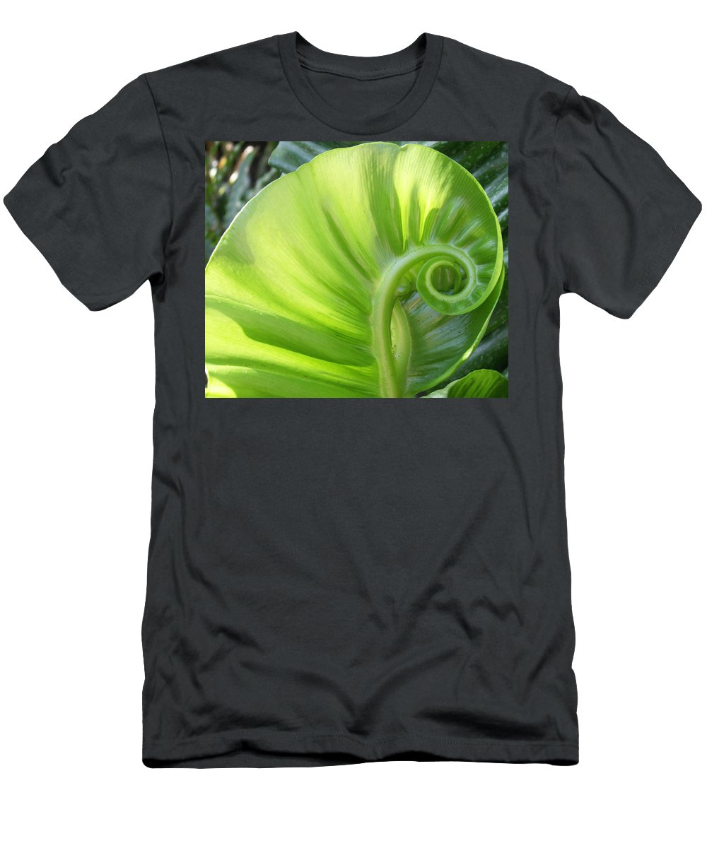 Leaf Men's T-Shirt (Athletic Fit) featuring the photograph Curly Leaf by Amy Fose