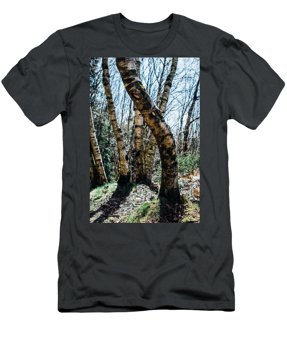 Birch Men's T-Shirt (Athletic Fit) featuring the photograph Curved Birch Tree by Pati Photography
