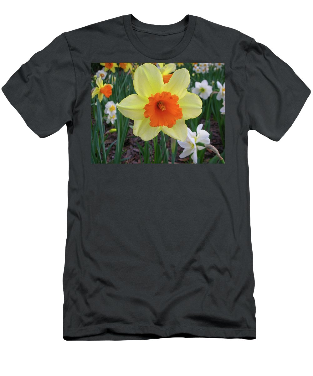 Flowers Men's T-Shirt (Athletic Fit) featuring the photograph Daffodil 0796 by Guy Whiteley