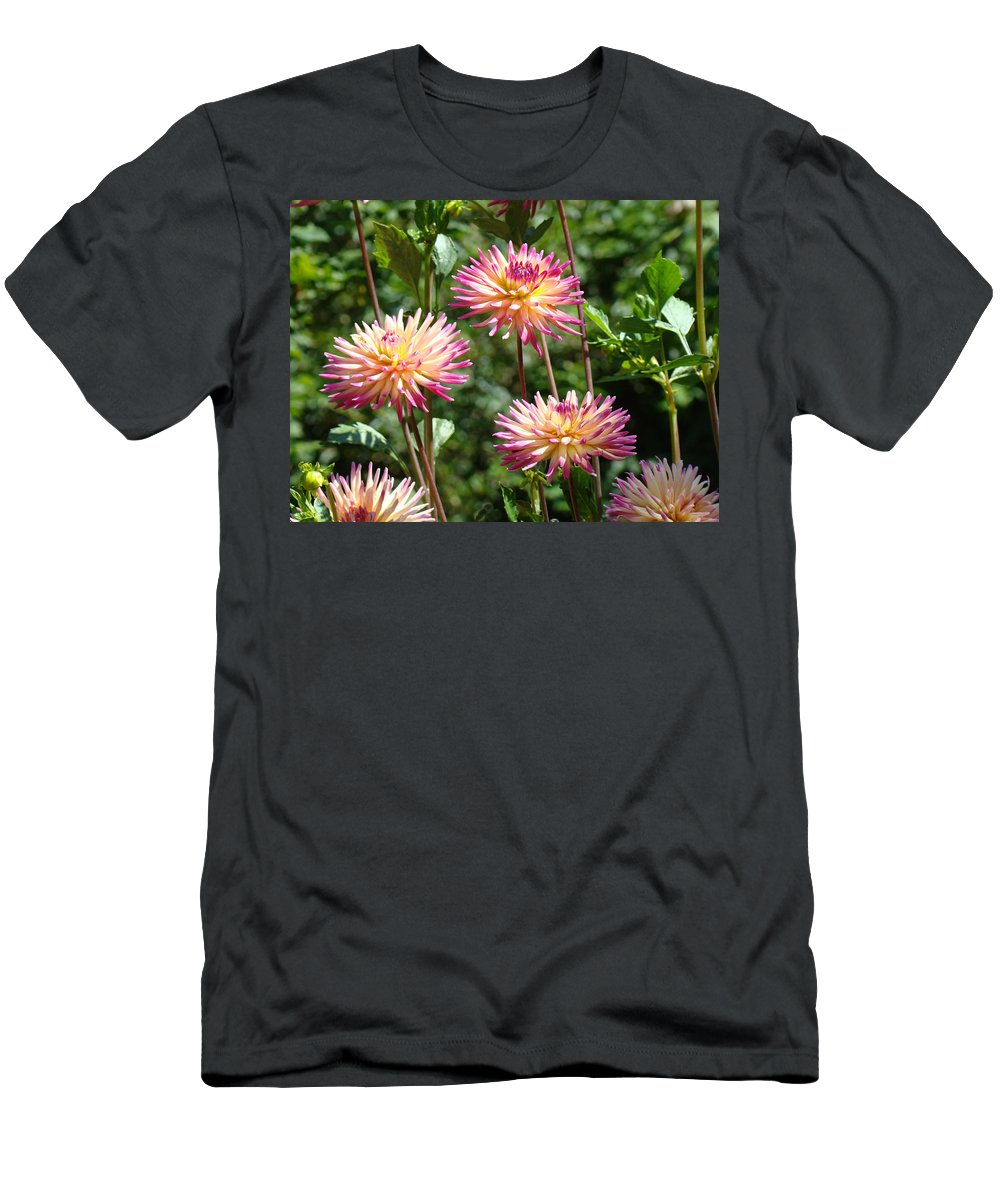 Dahlia Men's T-Shirt (Athletic Fit) featuring the photograph Dahlia Garden Floral Pink Yellow Botanical Landscape Baslee Troutman by Baslee Troutman