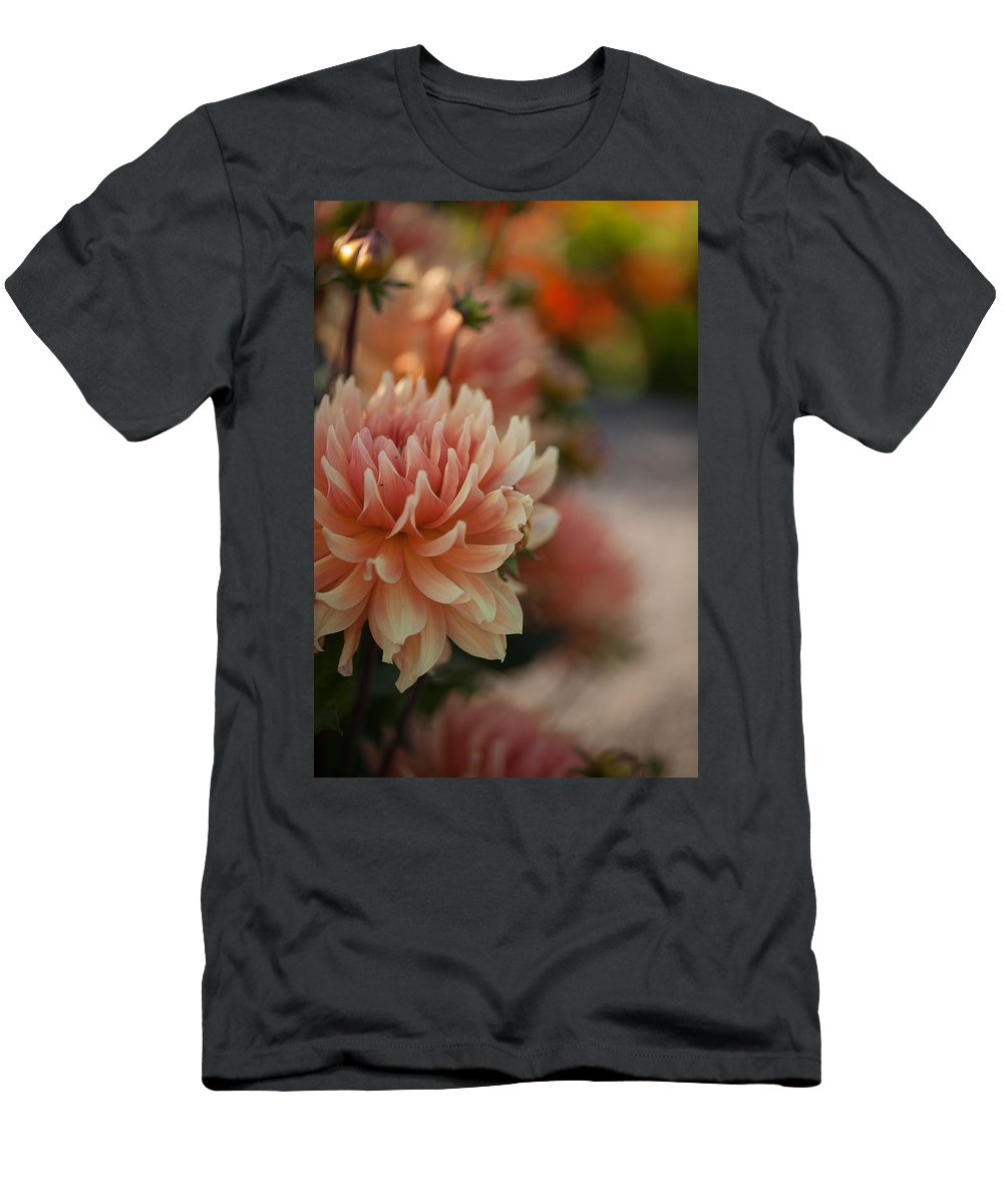 Flower Men's T-Shirt (Athletic Fit) featuring the photograph Dahlias Season by Mike Reid