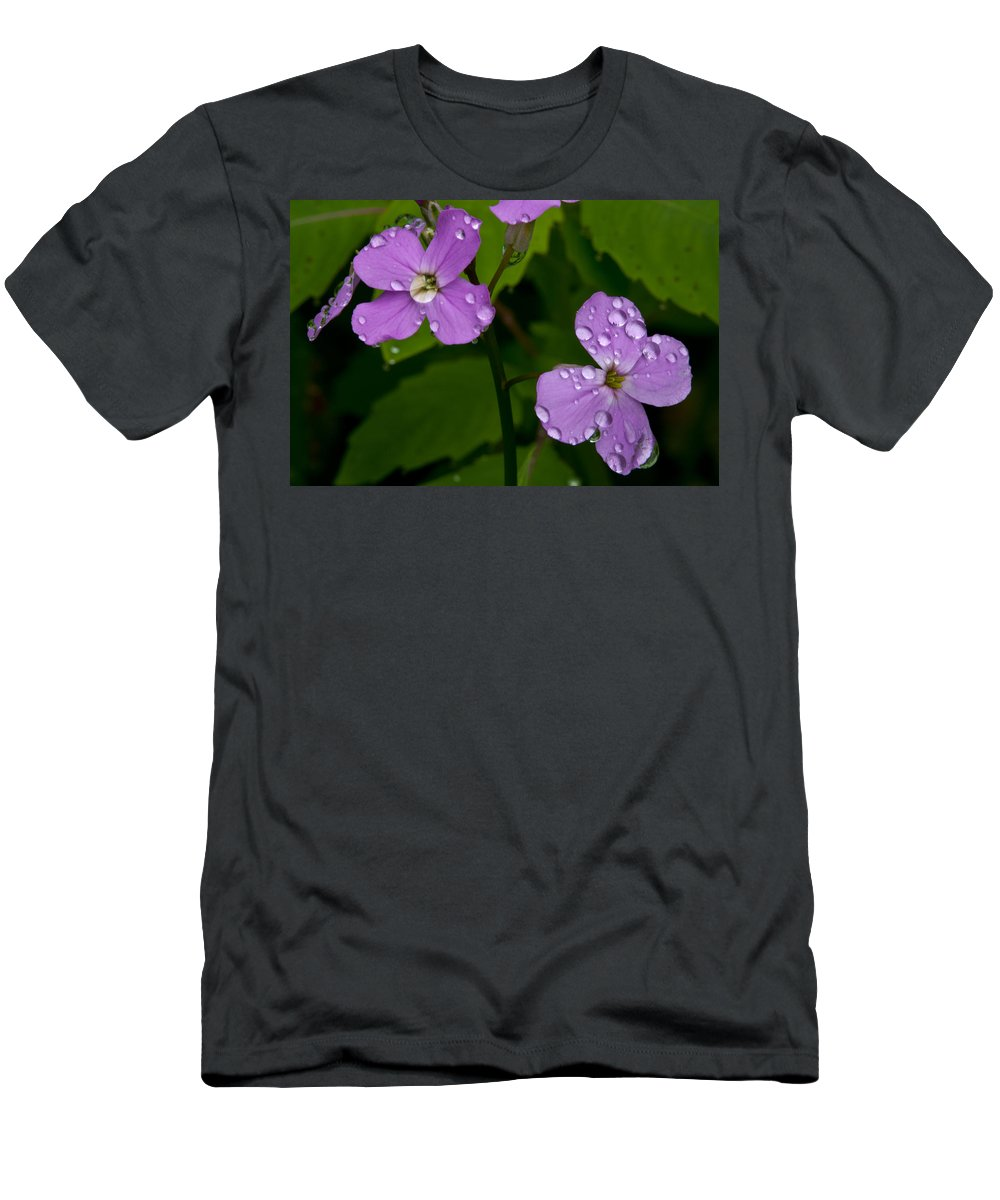 Wildflowers Men's T-Shirt (Athletic Fit) featuring the photograph Dame's Rocket Raindrops#2 by Irwin Barrett