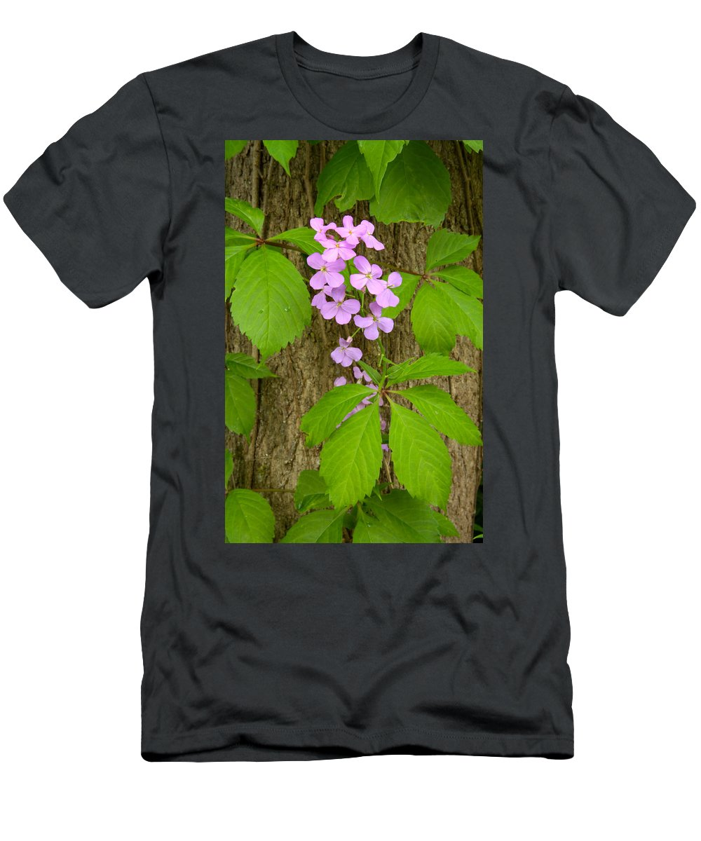 Wildflowers Men's T-Shirt (Athletic Fit) featuring the photograph Dame's Rocket Wildflowers And Creeping Vines by Irwin Barrett